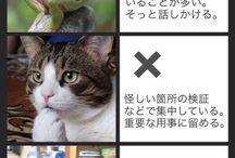 作法 How to
