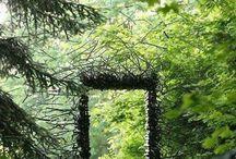 ovi metsään