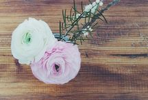 Flowers / floral, centrepieces, spring, wedding, decorate