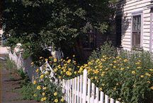 Picket Fence Landscaping / by Kathy Masiulis