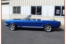 Mustang's...uhh,  love 'em