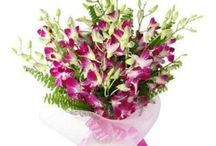 25 Most Beautiful Orchid Flowers which you can buy online / This board tells you about 25 Most beautiful orchid flowers which you can buy online.