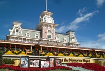 Disney World / My pictures from Disney in December / by Amanda Marceaux