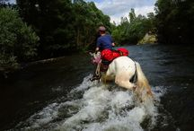 Vacations on Horse back around the world