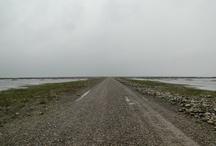 sav / naturalpark Wadden Sea i Denmark, Gdynia Orlowo og Staithes i England.