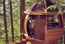 Tree House and housing units / #tree #house and #housing #units