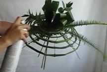 Video floral
