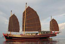 Liveaboards / Scuba diving liveaboard vessels.