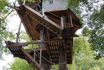 Tree Houses / by Elisa Salamini