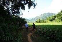 Mai Chau Hiking