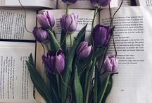 Flower and books