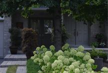 Ogród formowany