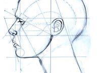 [Anatomy] Head