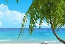 Tropical/Coastal Decor and Tips / All Things Coastal/Tropical  / by Terry