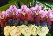 Floral Arrangements / A collection of floral arrangements by The Arrangement Floral Design