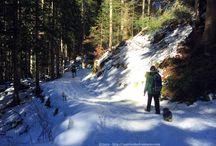 Trekking - escursioni -passeggiate