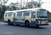 Buses/Flex