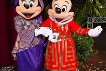 Disney / princess