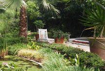 Emilio Flores Jardinería / Emilio Flores es una empresa de servicios de jardinería y paisajismo comprometida contigo. Nuestra experiencia y formación nos permite ofrecer un servicio de elevada calidad, con un asesoramiento técnico y profesional y con una clara apuesta por la innovación y el respeto al medio ambiente