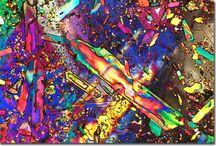 GH au microscope