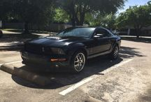 Parking Lot Ponies / Want to be apart of our Parking Lot Ponies? Come to Dallas Mustang and we will take a snap shot of your pony for our collection