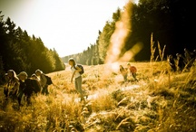 Active Living - hostelling bavaria, germany / Bavaria is far more than the greatest beer experience, it is way more than only the oktoberfest in munich. Alps, awesome landscapes and happy people. Discover one of the most beautiful places on earth.