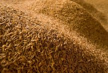 Agricultural residues / by Bioenergy Crops