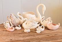 Swan Seeker