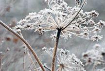 Winter sfeerbeeld - CKV klas 3