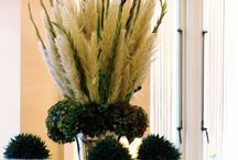 Pampas Grass Arrangements fall / I am a new lover of Pampas grass. It gives you a grand effect with the tall pouty plumes!