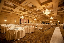 Wedding Reception / Where the fun begins ~ from focusproduction.ca