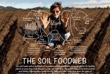 Soil Science / We are self-proclaimed soil nerds! We believe that rebuilding soil is critical to our survival.