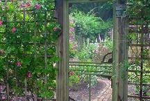 Trädgården inspiration