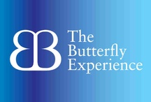 THE BUTTERFLY EXPERIENCE COLLECTION / Karen Whitelaw-Smith, Founder of The Butterfly Experience System which is a four part system working with the mental, emotional, physical and spiritual so you can step into the vortex of wealth and fly like the Butterfly.