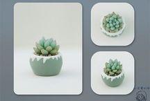 captus porcelana