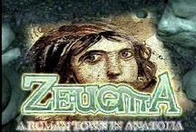 Zeugma,gaziantep / Gaziantep zeugma private daily tour,transfer services,adana flughafen transfer services,Gaziantep flughafen mietwagen,Gaziantep airport rental car supplier,Gaziantep airport transfer to Urfa,Urfa daily tour,Adiyaman daily tour,Gaziantep coach,minibus hire company in Gaziantep,Turkey. Please,Don't hesitate to call us at +90 555 455 9056 (For English)