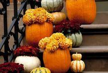 Fall / by Kim Hodges