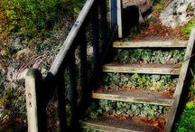 Outdoor Stairs / by Blessed Antiques
