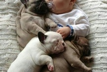 Bawww!  So Cute!