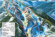 Winter Activities / by Viceroy Snowmass