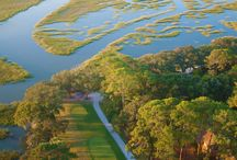 Golf / The Landings Club members enjoy six distinct private courses. Our courses are easily accessible—all six are within the community and just a golf cart ride away. Designed by the likes of Arnold Palmer and Tom Fazio, these courses are challenging, diverse, and all yours.
