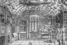 珍品展示cabinet of curiosities