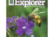 Explorer Magazine / Issues of our Explorer magazine, full of programming, events, camps, and other fun activities and information!