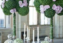 Spectacular Wedding Ideas