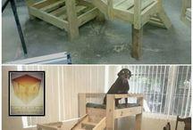 Doggies / #Puppy #dogs