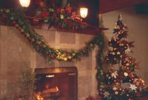 Fireplaces / Custom designed fireplace perfect to enjoy on cold winter days!