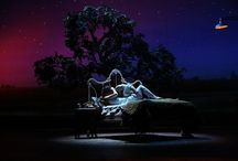Past Shows - BRIDGES OF MADISON COUNTY / See The Bridges of Madison County at the Fox April 5-17, 2016.