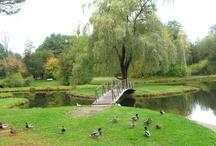 Glens Falls,NY