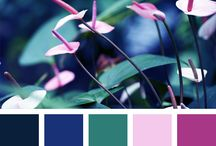 color combos for yes
