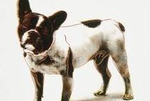 EL PERRO EN EL ARTE / Perros inmortalizados en la historia por grandes artistas.